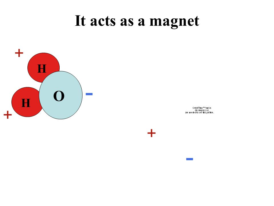 It acts as a magnet H H O + + - + -