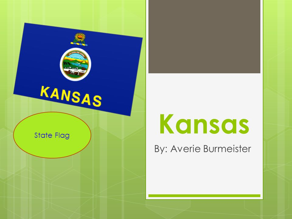 Kansas By: Averie Burmeister State Flag