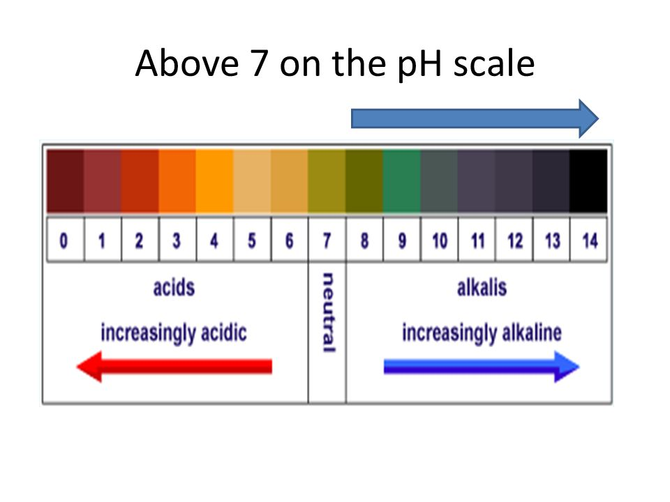 Above 7 on the pH scale