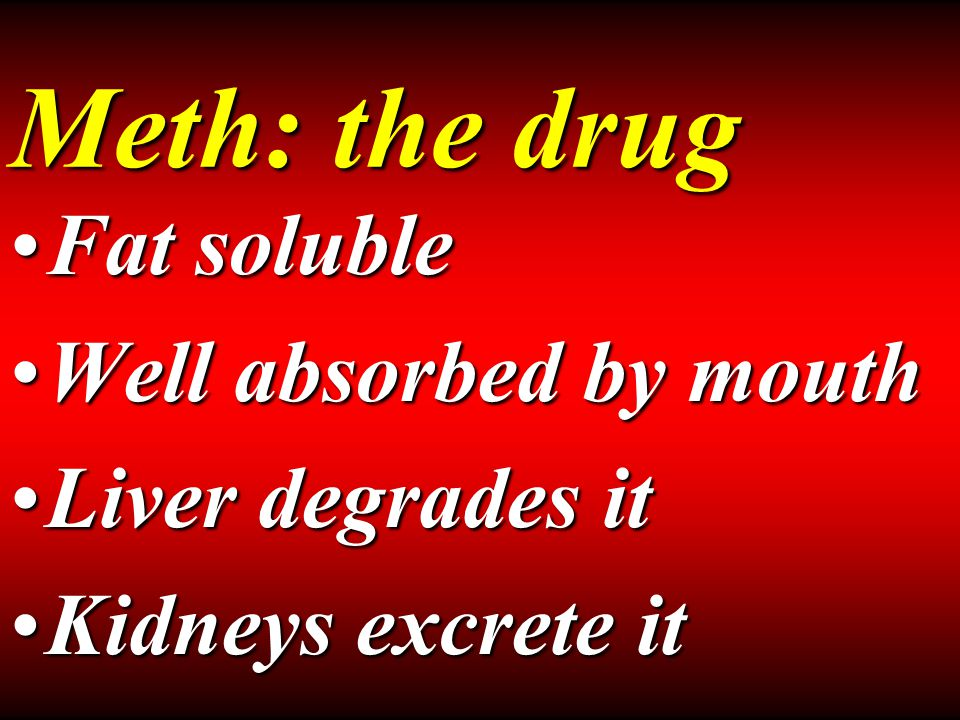 Meth: the drug Fat solubleFat soluble Well absorbed by mouthWell absorbed by mouth Liver degrades itLiver degrades it Kidneys excrete itKidneys excrete it