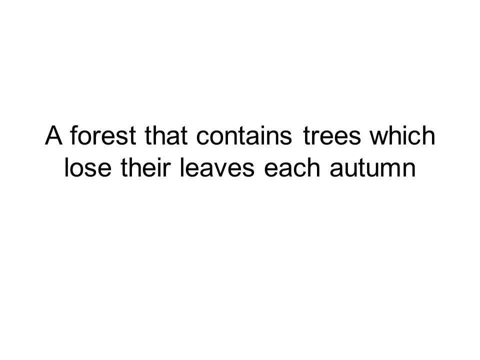 A forest that contains trees which lose their leaves each autumn