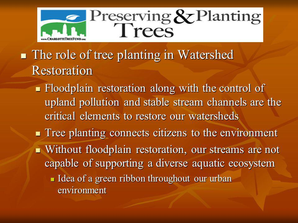 The role of tree planting in Watershed Restoration The role of tree planting in Watershed Restoration Floodplain restoration along with the control of upland pollution and stable stream channels are the critical elements to restore our watersheds Floodplain restoration along with the control of upland pollution and stable stream channels are the critical elements to restore our watersheds Tree planting connects citizens to the environment Tree planting connects citizens to the environment Without floodplain restoration, our streams are not capable of supporting a diverse aquatic ecosystem Without floodplain restoration, our streams are not capable of supporting a diverse aquatic ecosystem Idea of a green ribbon throughout our urban environment Idea of a green ribbon throughout our urban environment