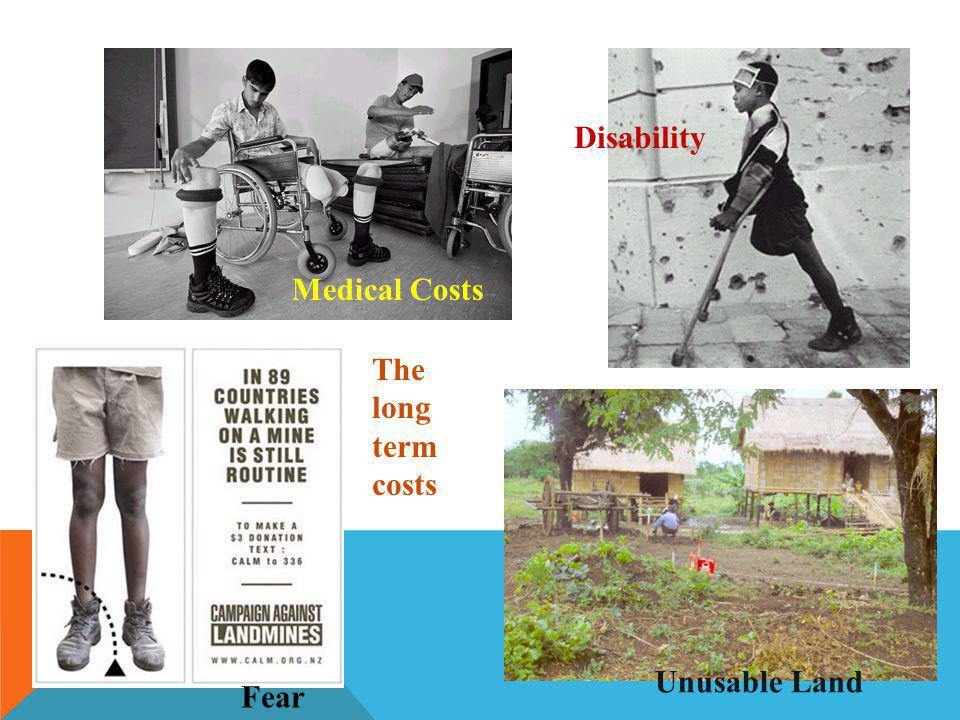 The long term costs Disability Medical Costs Unusable Land Fear