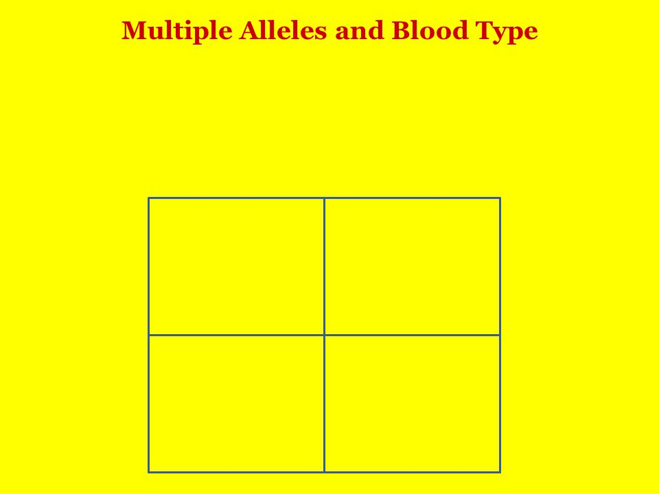 Multiple Alleles and Blood Type