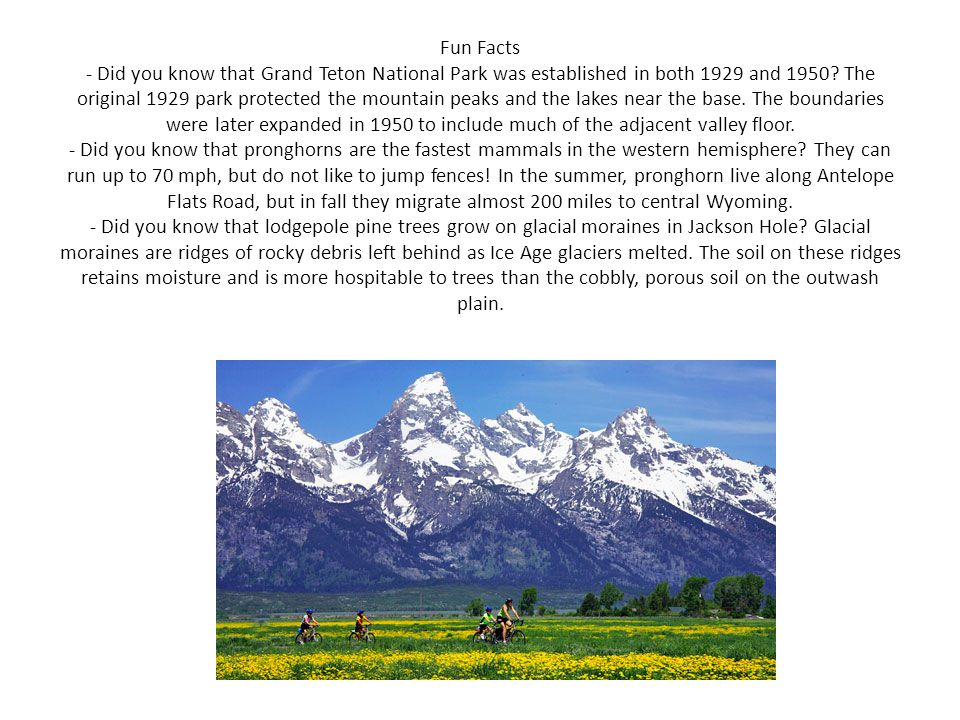 Fun Facts - Did you know that Grand Teton National Park was established in both 1929 and 1950.