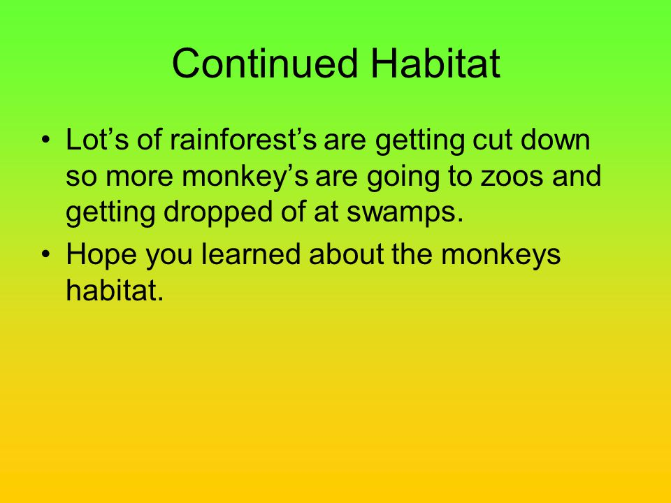 Continued Habitat Lot's of rainforest's are getting cut down so more monkey's are going to zoos and getting dropped of at swamps.