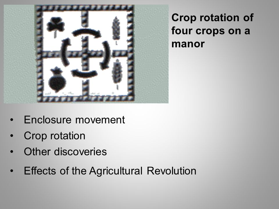 Crop rotation of four crops on a manor Enclosure movement Crop rotation Other discoveries Effects of the Agricultural Revolution