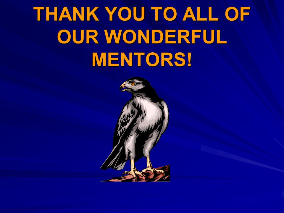 THANK YOU TO ALL OF OUR WONDERFUL MENTORS!