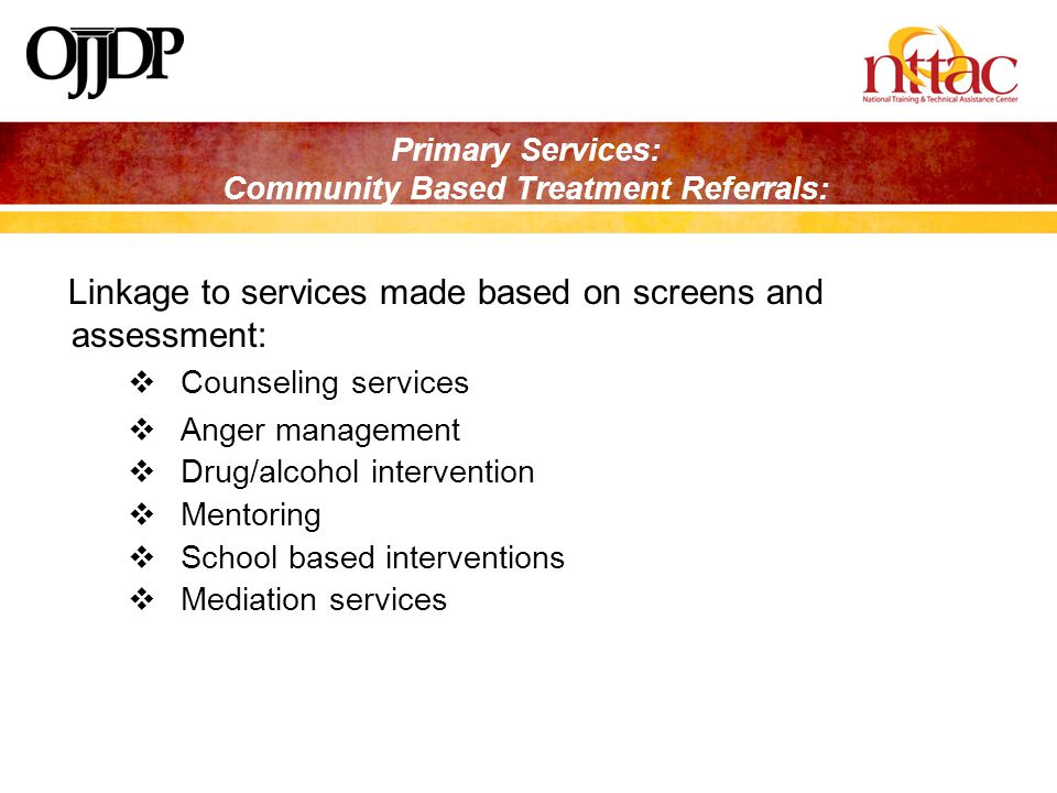 Primary Services: Community Based Treatment Referrals: Linkage to services made based on screens and assessment:  Counseling services  Anger management  Drug/alcohol intervention  Mentoring  School based interventions  Mediation services
