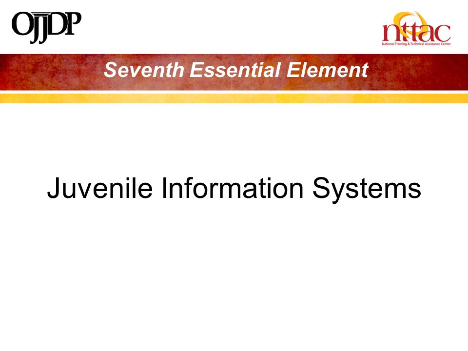 Seventh Essential Element Juvenile Information Systems