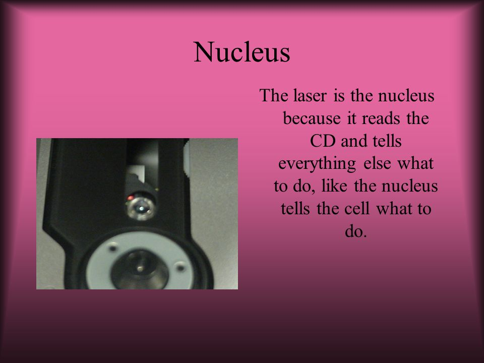 Nucleus The laser is the nucleus because it reads the CD and tells everything else what to do, like the nucleus tells the cell what to do.