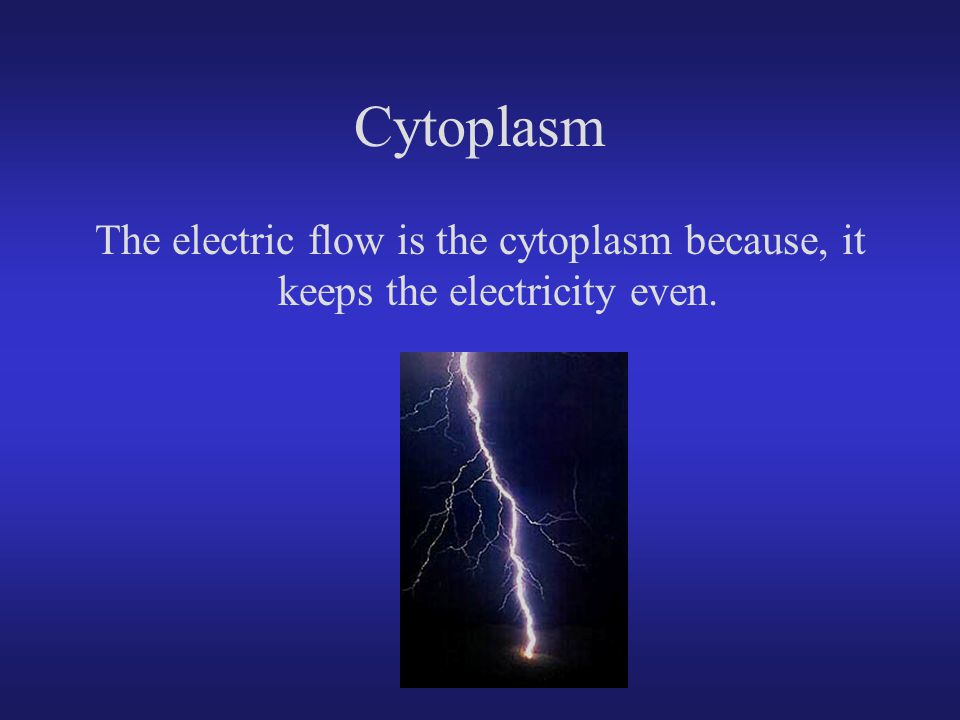Cytoplasm The electric flow is the cytoplasm because, it keeps the electricity even.