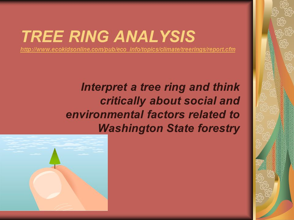 TREE RING ANALYSIS http://www.ecokidsonline.com/pub/eco_info/topics/climate/treerings/report.cfm http://www.ecokidsonline.com/pub/eco_info/topics/climate/treerings/report.cfm Interpret a tree ring and think critically about social and environmental factors related to Washington State forestry