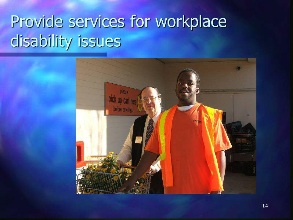 14 Provide services for workplace disability issues