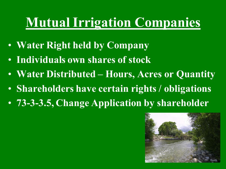 Mutual Irrigation Companies Water Right held by Company Individuals own shares of stock Water Distributed – Hours, Acres or Quantity Shareholders have certain rights / obligations 73-3-3.5, Change Application by shareholder