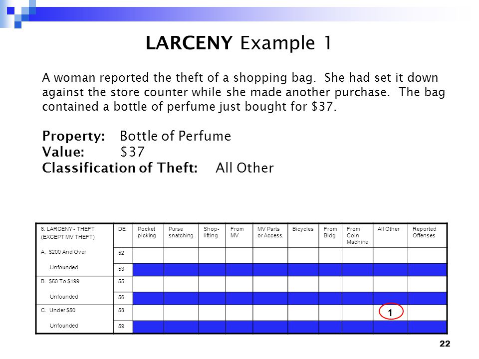22 LARCENY Example 1 A woman reported the theft of a shopping bag.