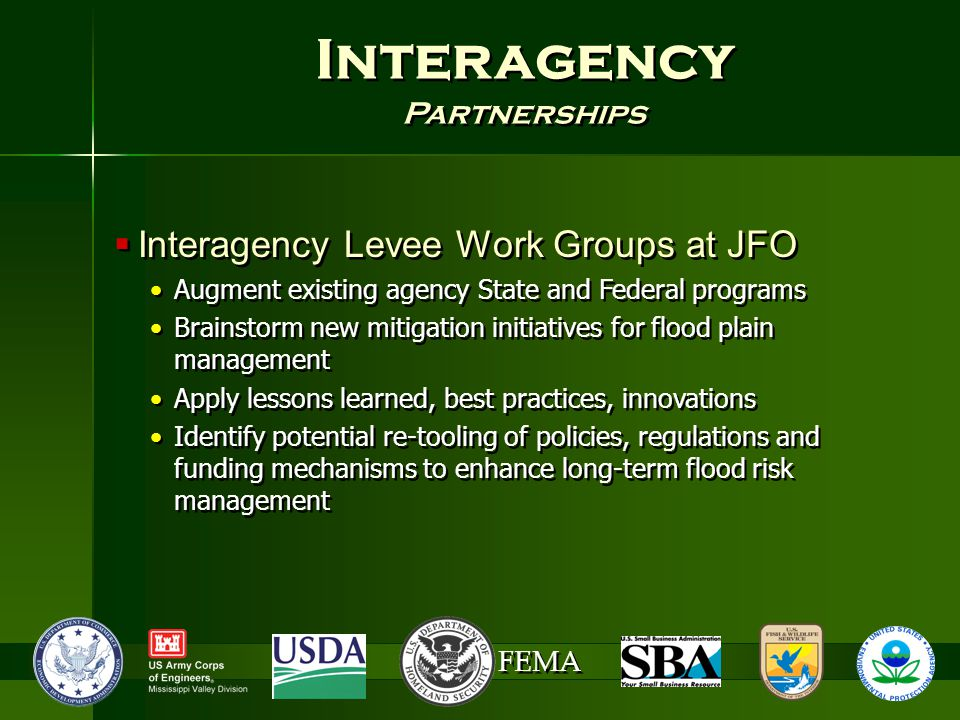 FEMA Interagency Partnerships Interagency Partnerships  Interagency Levee Work Groups at JFO Augment existing agency State and Federal programs Brainstorm new mitigation initiatives for flood plain management Apply lessons learned, best practices, innovations Identify potential re-tooling of policies, regulations and funding mechanisms to enhance long-term flood risk management  Interagency Levee Work Groups at JFO Augment existing agency State and Federal programs Brainstorm new mitigation initiatives for flood plain management Apply lessons learned, best practices, innovations Identify potential re-tooling of policies, regulations and funding mechanisms to enhance long-term flood risk management