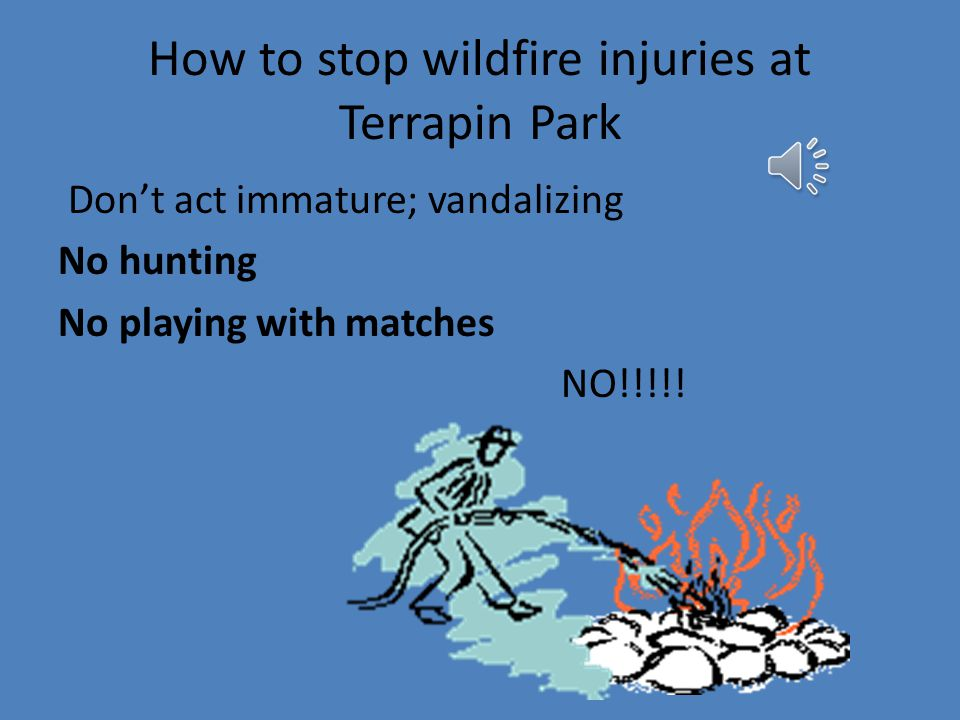 Our focus group asks that rules be put in Terrapin Park to improve fire safety at the Terrapin Nature Park this summer.