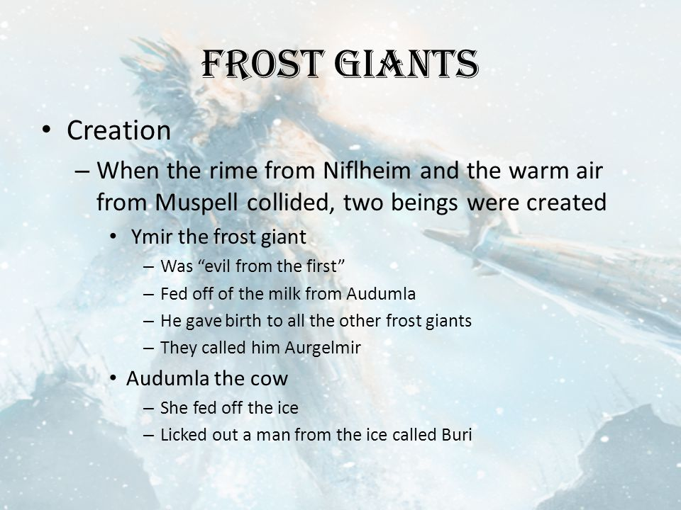 Frost Giants Creation – When the rime from Niflheim and the warm air from Muspell collided, two beings were created Ymir the frost giant – Was evil from the first – Fed off of the milk from Audumla – He gave birth to all the other frost giants – They called him Aurgelmir Audumla the cow – She fed off the ice – Licked out a man from the ice called Buri