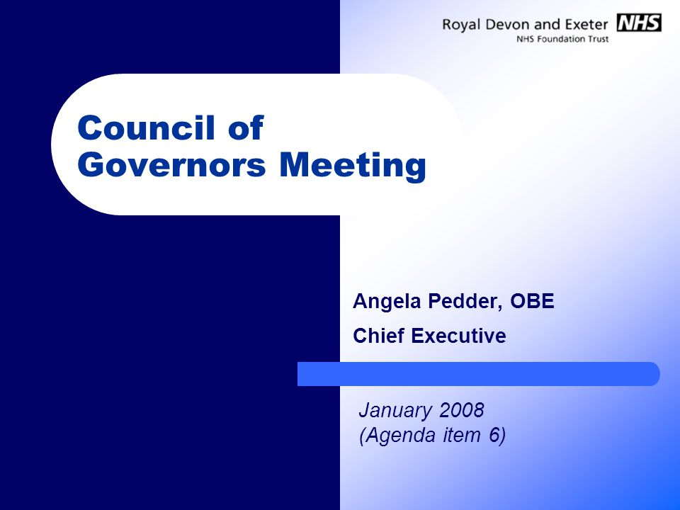 Council of Governors Meeting Angela Pedder, OBE Chief Executive January 2008 (Agenda item 6)