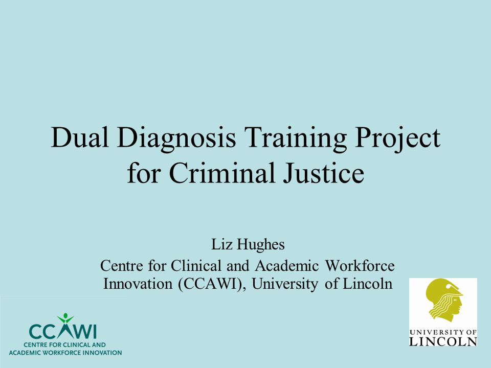 Dual Diagnosis Training Project for Criminal Justice Liz Hughes Centre for Clinical and Academic Workforce Innovation (CCAWI), University of Lincoln