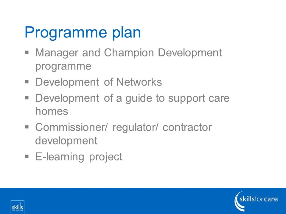 Programme plan  Manager and Champion Development programme  Development of Networks  Development of a guide to support care homes  Commissioner/ regulator/ contractor development  E-learning project