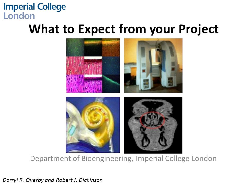 What to Expect from your Project Department of Bioengineering, Imperial College London Darryl R.