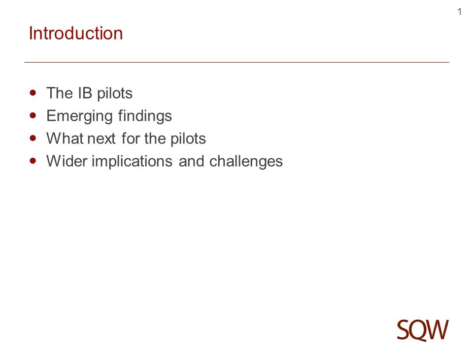 1 Introduction The IB pilots Emerging findings What next for the pilots Wider implications and challenges