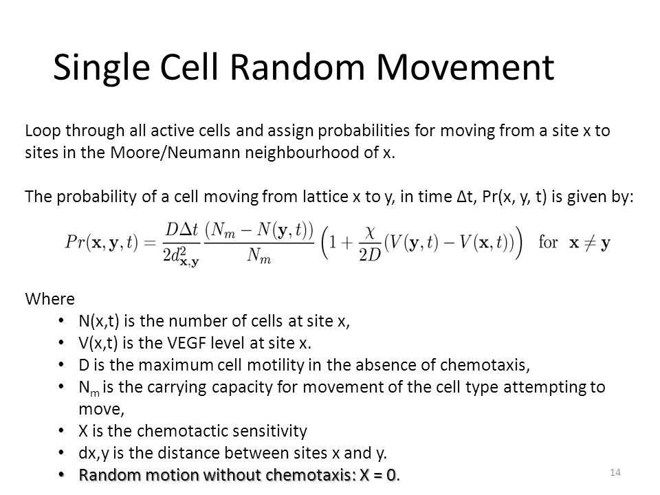 Single Cell Random Movement 14 Loop through all active cells and assign probabilities for moving from a site x to sites in the Moore/Neumann neighbourhood of x.