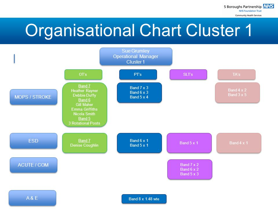 Organisational Chart Cluster 1 Sue Grumley Operational Manager Cluster 1 Sue Grumley Operational Manager Cluster 1 MOPS / STROKE ESD ACUTE / COM A & E OT's OT's Band 7 x 3 Band 6 x 3 Band 5 x 4 Band 7 x 3 Band 6 x 3 Band 5 x 4 Band 7 Heather Rayner Debbie Duffy Band 6 Gill Maher Emma Griffiths Nicola Smith Band 5 3 Rotational Posts Band 7 Heather Rayner Debbie Duffy Band 6 Gill Maher Emma Griffiths Nicola Smith Band 5 3 Rotational Posts PT's PT's SLT's SLT's TA's TA's Band 4 x 2 Band 3 x 5 Band 4 x 2 Band 3 x 5 Band 8 x 1.48 wte Band 8 x 1.48 wte Band 7 Denise Coughlin Band 7 Denise Coughlin Band 6 x 1 Band 5 x 1 Band 6 x 1 Band 5 x 1 Band 5 x 1 Band 5 x 1 Band 4 x 1 Band 4 x 1 Band 7 x 2 Band 6 x 2 Band 5 x 3 Band 7 x 2 Band 6 x 2 Band 5 x 3
