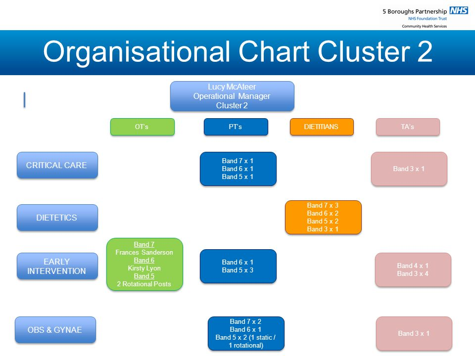 Organisational Chart Cluster 2 Lucy McAteer Operational Manager Cluster 2 Lucy McAteer Operational Manager Cluster 2 CRITICAL CARE DIETETICS EARLY INTERVENTION OBS & GYNAE OT's OT's Band 7 x 1 Band 6 x 1 Band 5 x 1 Band 7 x 1 Band 6 x 1 Band 5 x 1 PT's PT's DIETITIANS DIETITIANS TA's TA's Band 3 x 1 Band 3 x 1 Band 7 x 2 Band 6 x 1 Band 5 x 2 (1 static / 1 rotational) Band 7 x 2 Band 6 x 1 Band 5 x 2 (1 static / 1 rotational) Band 7 Frances Sanderson Band 6 Kirsty Lyon Band 5 2 Rotational Posts Band 7 Frances Sanderson Band 6 Kirsty Lyon Band 5 2 Rotational Posts Band 6 x 1 Band 5 x 3 Band 6 x 1 Band 5 x 3 Band 7 x 3 Band 6 x 2 Band 5 x 2 Band 3 x 1 Band 7 x 3 Band 6 x 2 Band 5 x 2 Band 3 x 1 Band 4 x 1 Band 3 x 4 Band 4 x 1 Band 3 x 4 Band 3 x 1 Band 3 x 1