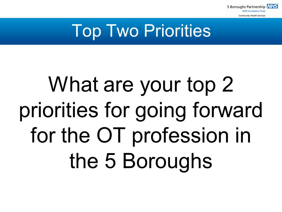 Top Two Priorities What are your top 2 priorities for going forward for the OT profession in the 5 Boroughs
