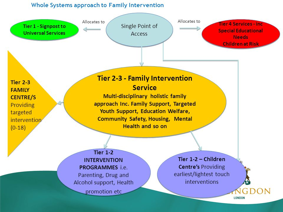 Whole Systems approach to Family Intervention Tier Family Intervention Service Multi-disciplinary holistic family approach Inc.