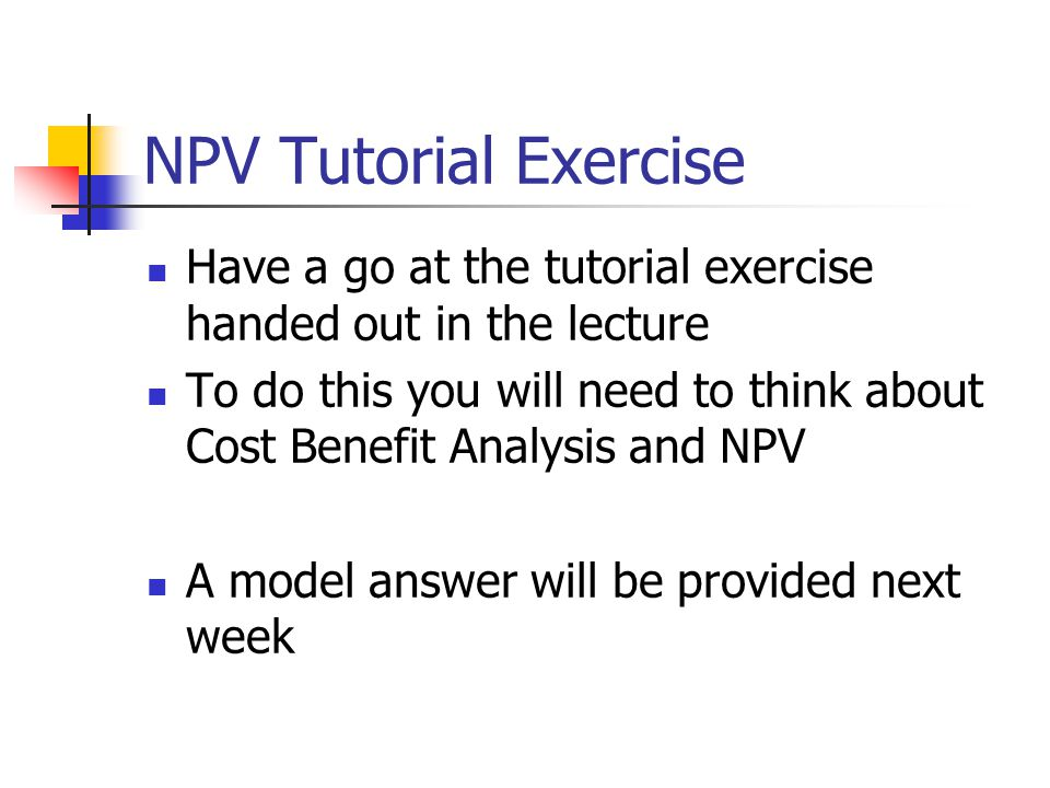 NPV Tutorial Exercise Have a go at the tutorial exercise handed out in the lecture To do this you will need to think about Cost Benefit Analysis and NPV A model answer will be provided next week
