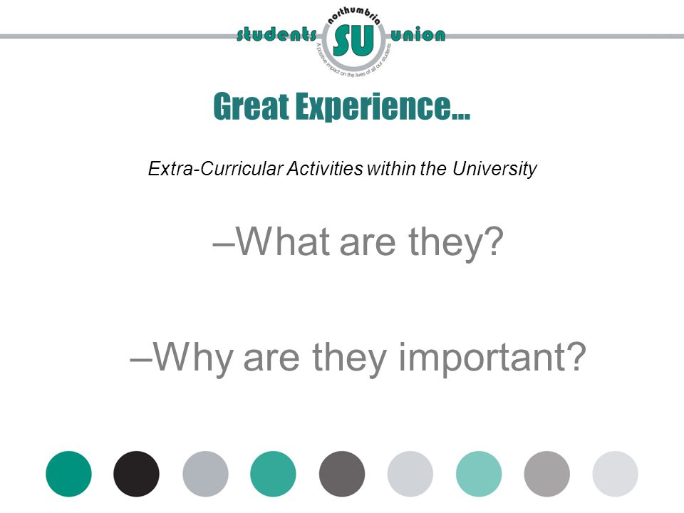 www.mynsu.co.uk Great Experience… Extra-Curricular Activities within the University –What are they.