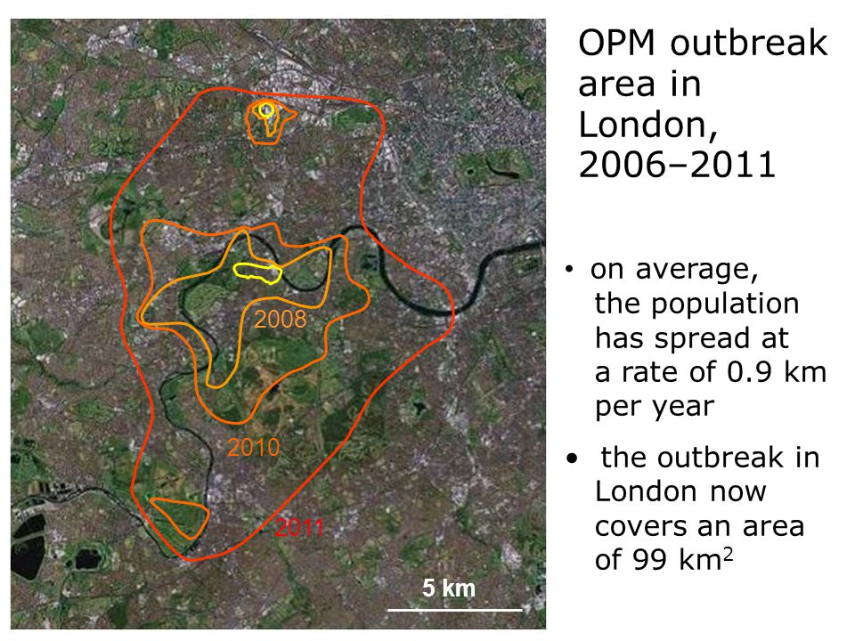 Hhhh sssssss OPM outbreak area in London, 2006–2011 2011 2008 5 km 2010 on average, the population has spread at a rate of 0.9 km per year the outbreak in London now covers an area of 99 km 2