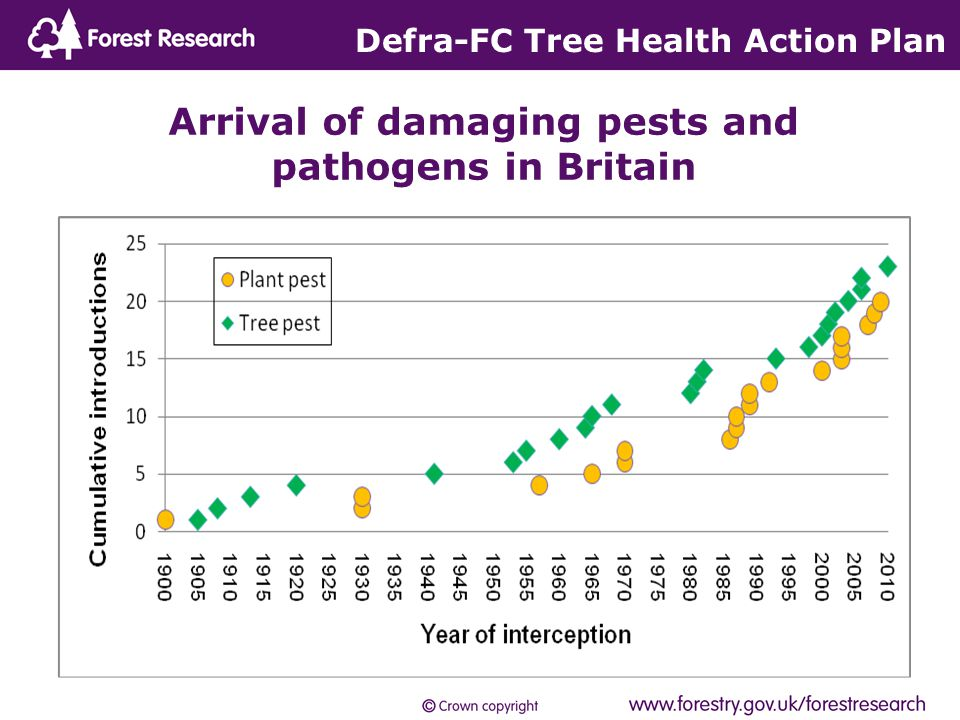 Defra-FC Tree Health Action Plan Arrival of damaging pests and pathogens in Britain