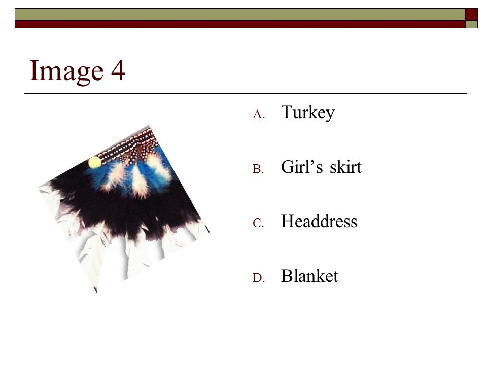 Image 4 A. Turkey B. Girl's skirt C. Headdress D. Blanket
