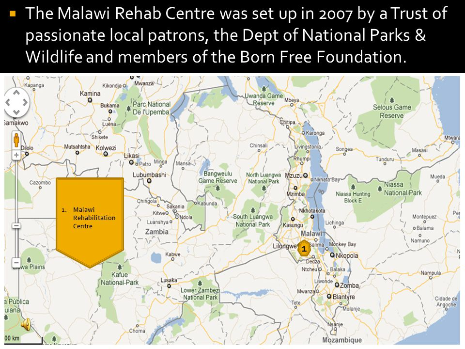 1 1.Malawi Rehabilitation Centre  The Malawi Rehab Centre was set up in 2007 by a Trust of passionate local patrons, the Dept of National Parks & Wildlife and members of the Born Free Foundation.