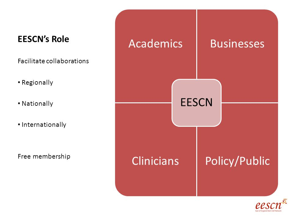 EESCN's Role AcademicsBusinesses CliniciansPolicy/Public EESCN Facilitate collaborations Regionally Nationally Internationally Free membership