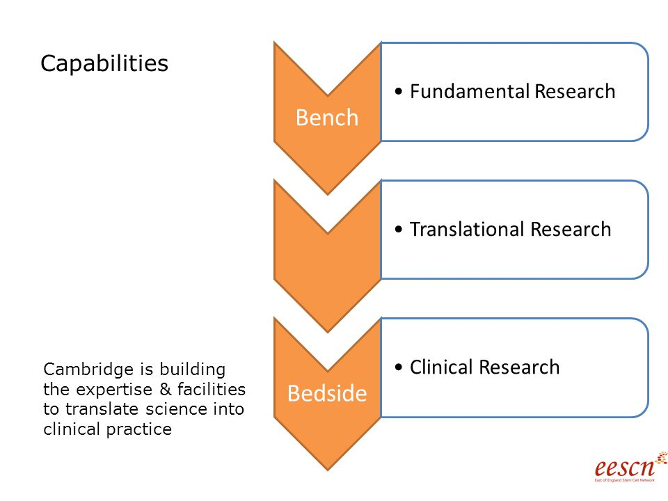 Capabilities Bench Fundamental ResearchTranslational Research Bedside Clinical Research Cambridge is building the expertise & facilities to translate science into clinical practice