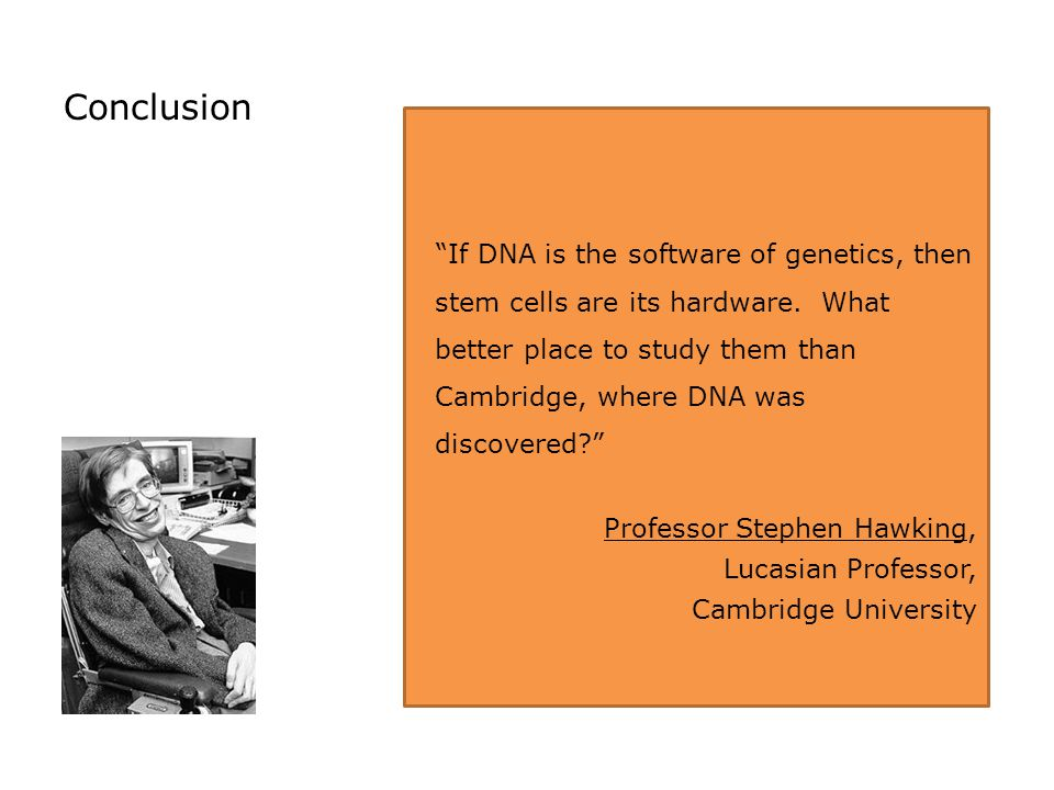 If DNA is the software of genetics, then stem cells are its hardware.