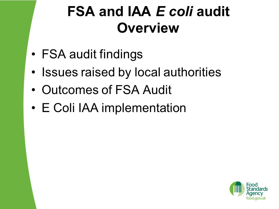 FSA audit findings Issues raised by local authorities Outcomes of FSA Audit E Coli IAA implementation FSA and IAA E coli audit Overview