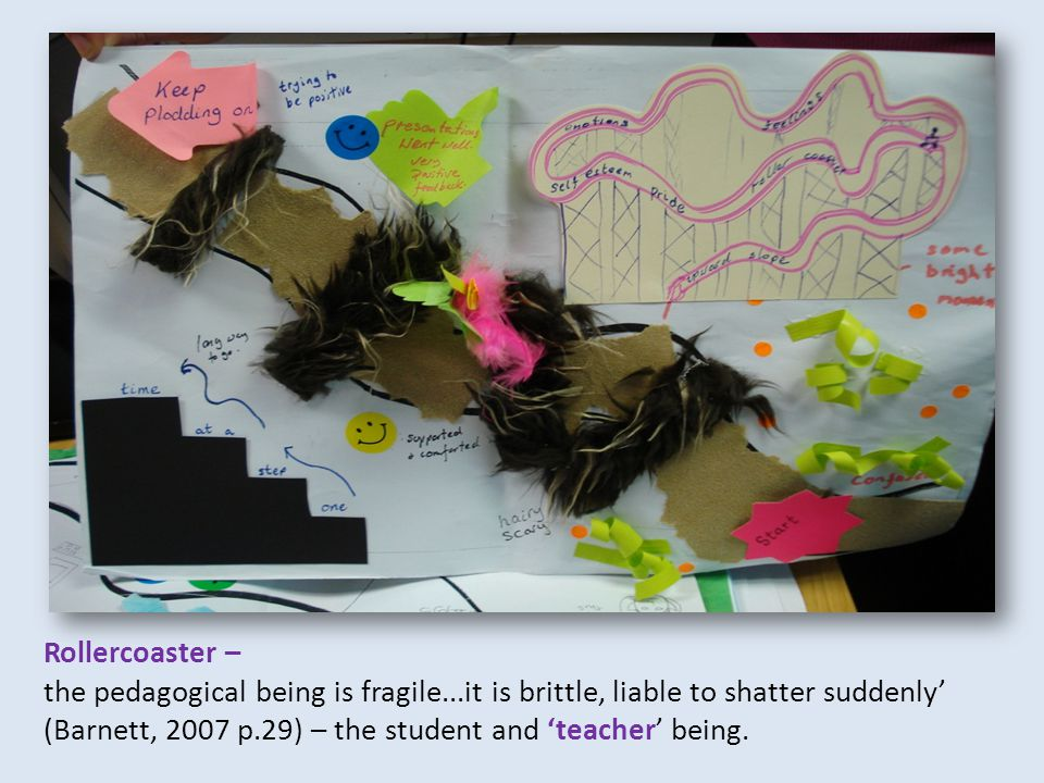 Rollercoaster – the pedagogical being is fragile...it is brittle, liable to shatter suddenly' (Barnett, 2007 p.29) – the student and 'teacher' being.