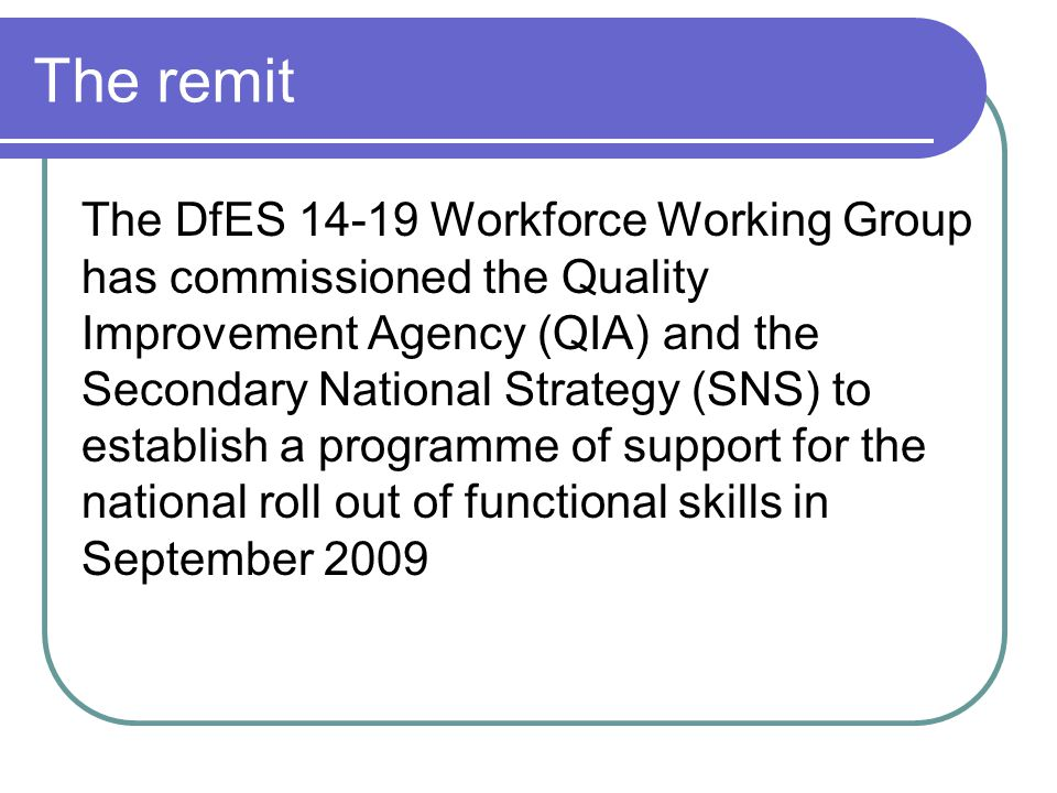 The remit The DfES 14-19 Workforce Working Group has commissioned the Quality Improvement Agency (QIA) and the Secondary National Strategy (SNS) to establish a programme of support for the national roll out of functional skills in September 2009