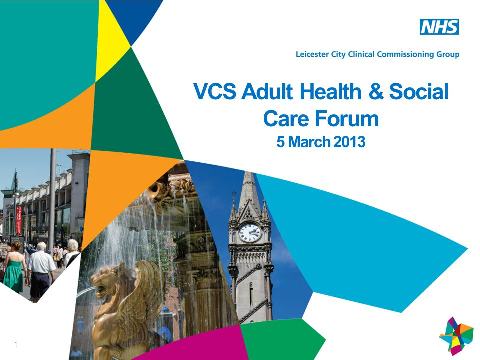 1 VCS Adult Health & Social Care Forum 5 March 2013