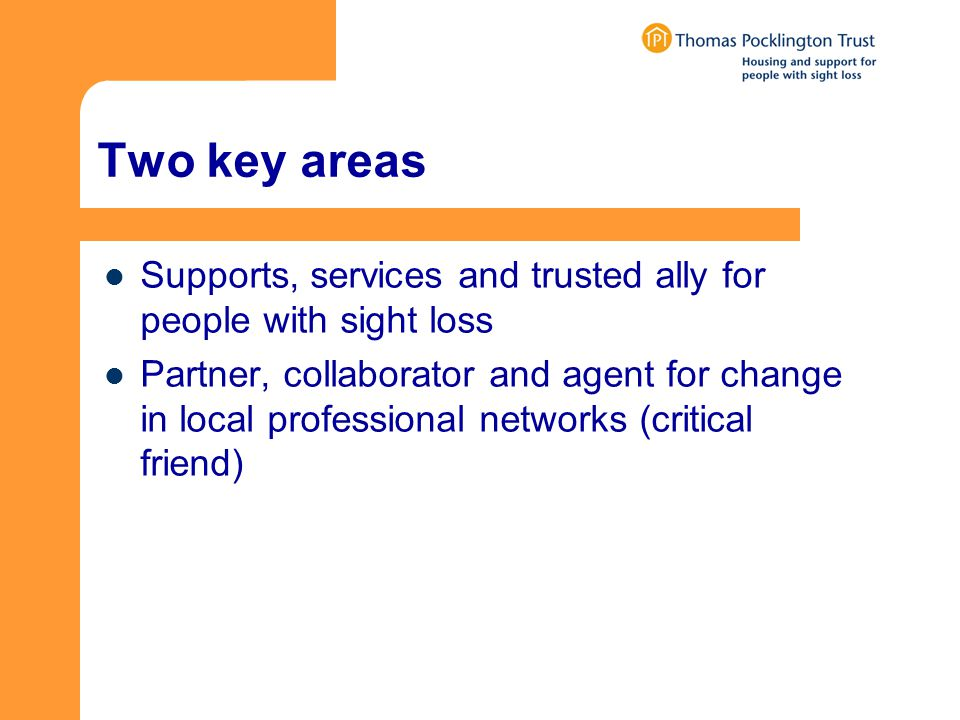 Two key areas Supports, services and trusted ally for people with sight loss Partner, collaborator and agent for change in local professional networks (critical friend)