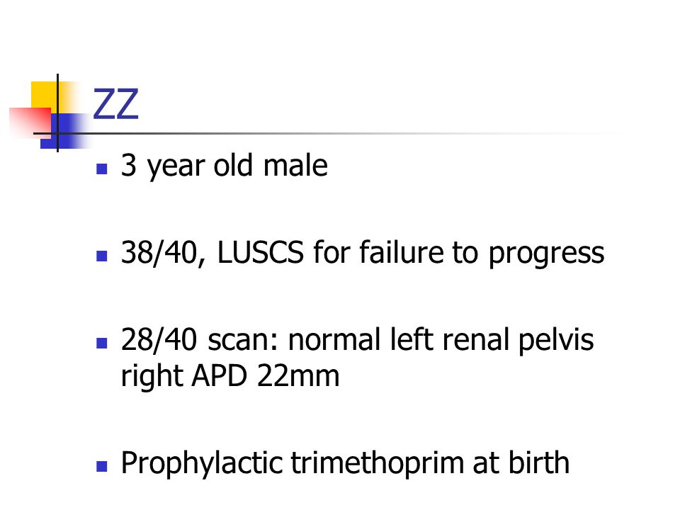 ZZ 3 year old male 38/40, LUSCS for failure to progress 28/40 scan: normal left renal pelvis right APD 22mm Prophylactic trimethoprim at birth