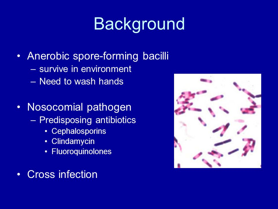 Background Anerobic spore-forming bacilli –survive in environment –Need to wash hands Nosocomial pathogen –Predisposing antibiotics Cephalosporins Clindamycin Fluoroquinolones Cross infection