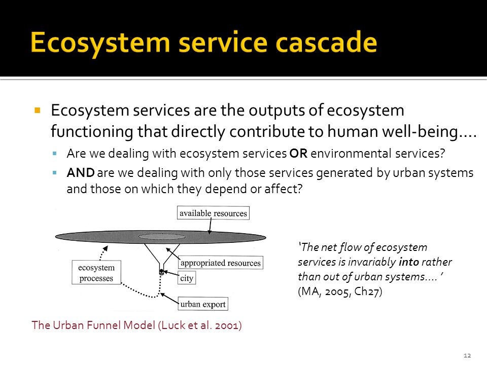  Ecosystem services are the outputs of ecosystem functioning that directly contribute to human well-being….